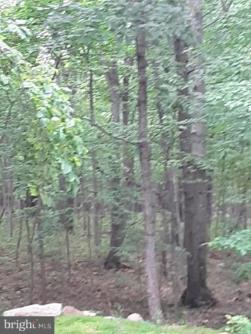 LOT 9 Panther, WINCHESTER, VA 22602 (#VAFV151436) :: Arlington Realty, Inc.
