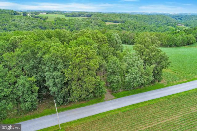 13895 Wolf Road, FELTON, PA 17322 (#PAYK119360) :: Keller Williams of Central PA East