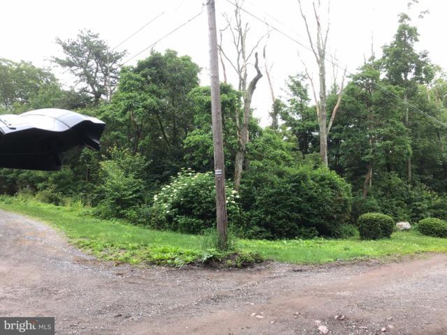 0 E Wildcat Road, TAMAQUA, PA 18252 (#PASK126448) :: The Joy Daniels Real Estate Group