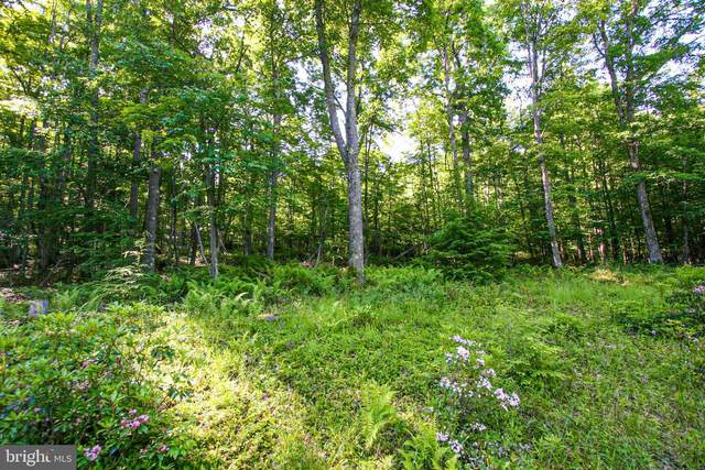 Lot 53 Pine Top Trail, OAKLAND, MD 21550 (#MDGA130796) :: ExecuHome Realty