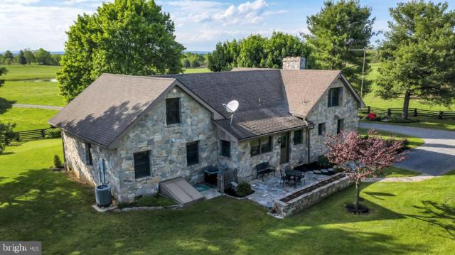 2486 Longmarsh Road, BERRYVILLE, VA 22611 (#VACL110538) :: Pearson Smith Realty
