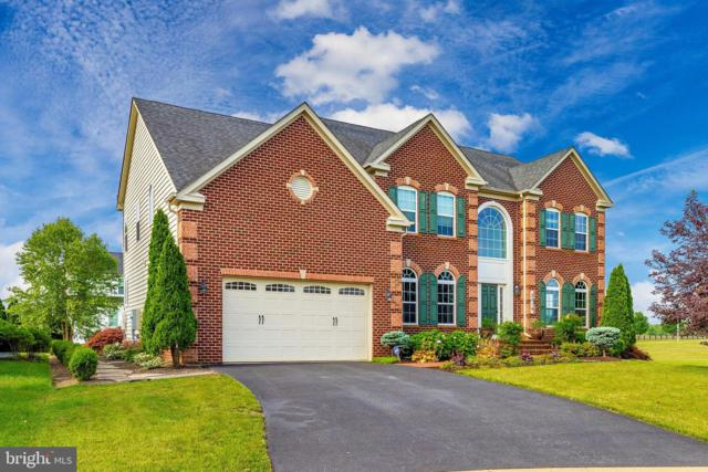 5519 Young Family Trl W Trail, ADAMSTOWN, MD 21710 (#MDFR248802) :: Bob Lucido Team of Keller Williams Integrity