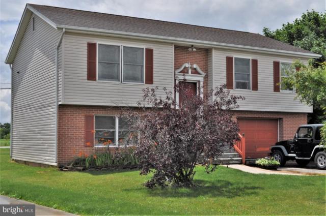 29 Antler Lane, NEW OXFORD, PA 17350 (#PAAD107490) :: Flinchbaugh & Associates