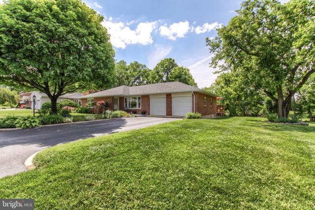 115 Sunset View Drive, NEW CUMBERLAND, PA 17070 (#PAYK119446) :: The Joy Daniels Real Estate Group