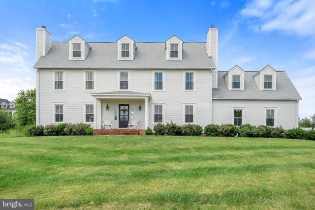 454 Spring House Lane, BERRYVILLE, VA 22611 (#VACL110540) :: LoCoMusings