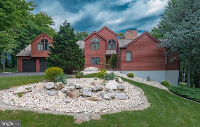 380 Stephens Road, ORWIGSBURG, PA 17961 (#PASK126476) :: The Heather Neidlinger Team With Berkshire Hathaway HomeServices Homesale Realty