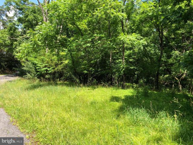 Virginia Line Road, BERKELEY SPRINGS, WV 25411 (#WVMO115566) :: Dart Homes