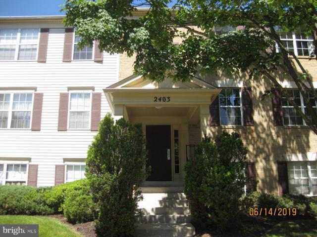 2403 Normandy Square Place #12, SILVER SPRING, MD 20906 (#MDMC666190) :: The Gold Standard Group