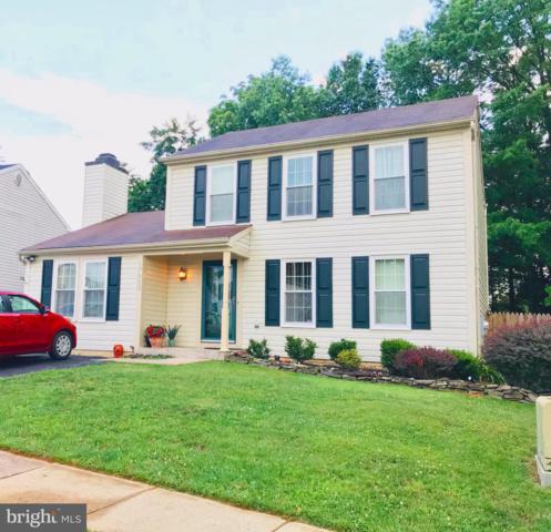 17820 Hazelcrest Drive, GAITHERSBURG, MD 20877 (#MDMC666192) :: Dart Homes