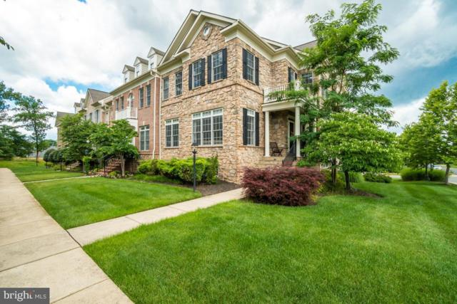 43521 Stargell Terrace, LEESBURG, VA 20176 (#VALO388130) :: The Greg Wells Team