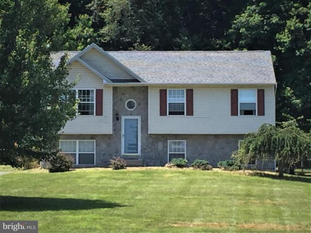 1350 Pond Neck Road, EARLEVILLE, MD 21919 (#MDCC164840) :: Circadian Realty Group