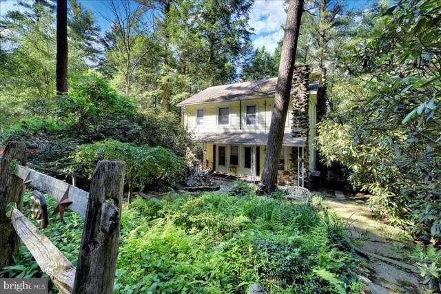 92 Shoreline Drive, PINE GROVE, PA 17963 (#PASK126520) :: Keller Williams Real Estate