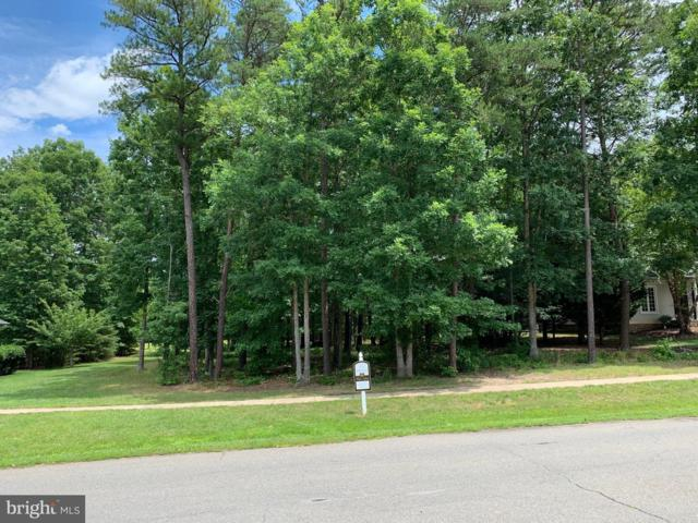 10809 Chatham Ridge Way, SPOTSYLVANIA, VA 22551 (#VASP213732) :: Pearson Smith Realty