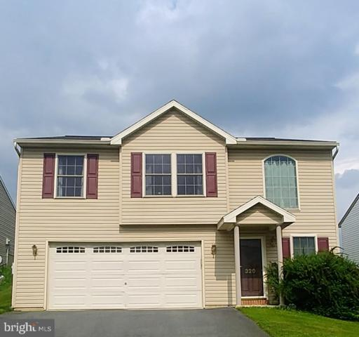 320 Swatara Creek Drive, JONESTOWN, PA 17038 (#PALN107630) :: The Joy Daniels Real Estate Group