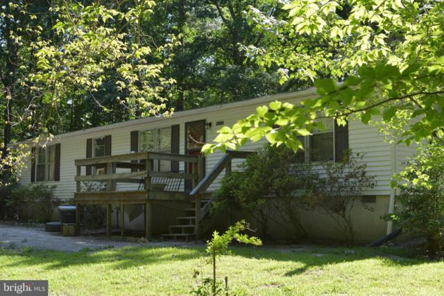 16500 S River Road, WOODFORD, VA 22580 (#VACV120498) :: Circadian Realty Group