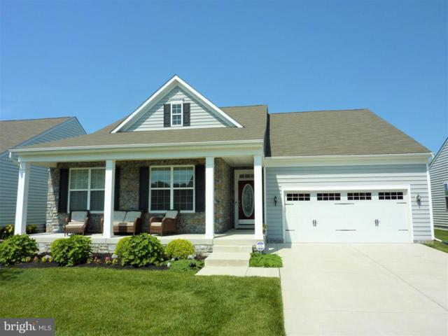 721 Cherry Tree Road, MIDDLETOWN, DE 19709 (#DENC481456) :: RE/MAX Coast and Country