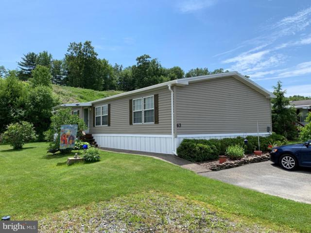 63 Angel Drive, NEW RINGGOLD, PA 17960 (#PASK126548) :: The Joy Daniels Real Estate Group