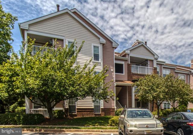 21024 Timber Ridge Terrace #303, ASHBURN, VA 20147 (#VALO388218) :: AJ Team Realty