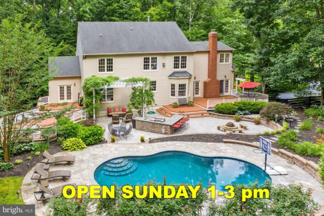 40885 Forest Glen Drive, LEESBURG, VA 20175 (#VALO388254) :: Gail Nyman Group