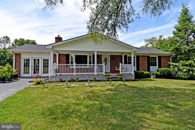 43581 Lost Corner Road, LEESBURG, VA 20176 (#VALO388264) :: Great Falls Great Homes
