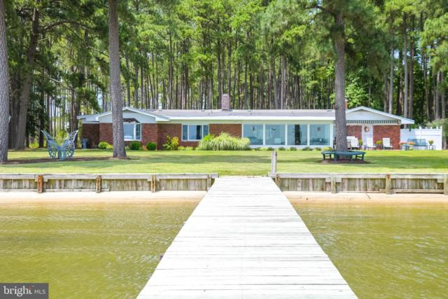 5233 Ragged Point Road, CAMBRIDGE, MD 21613 (#MDDO123806) :: Pearson Smith Realty