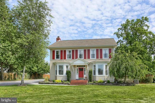 1125 Red Hill Road, DAUPHIN, PA 17018 (#PADA112056) :: The Joy Daniels Real Estate Group