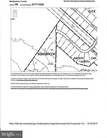 13206 Colton Lane, DARNESTOWN, MD 20878 (#MDMC666634) :: Dart Homes