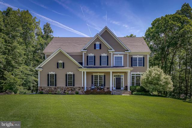 4619 Cherry Tree Lane Queen Ann, SYKESVILLE, MD 21784 (#MDCR189766) :: ExecuHome Realty