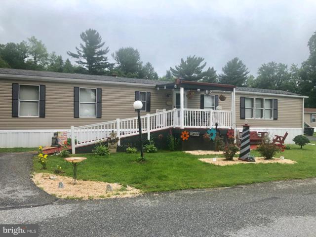833 Sunny Lane, GAP, PA 17527 (#PALA135504) :: The Craig Hartranft Team, Berkshire Hathaway Homesale Realty