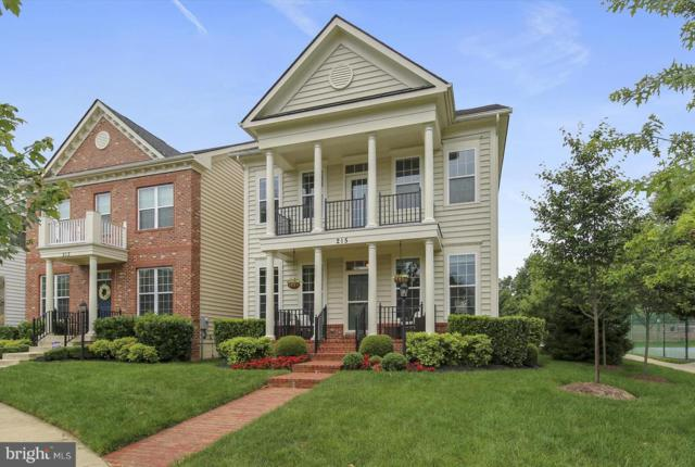 215 Winter Walk Drive, GAITHERSBURG, MD 20878 (#MDMC666718) :: The Kenita Tang Team