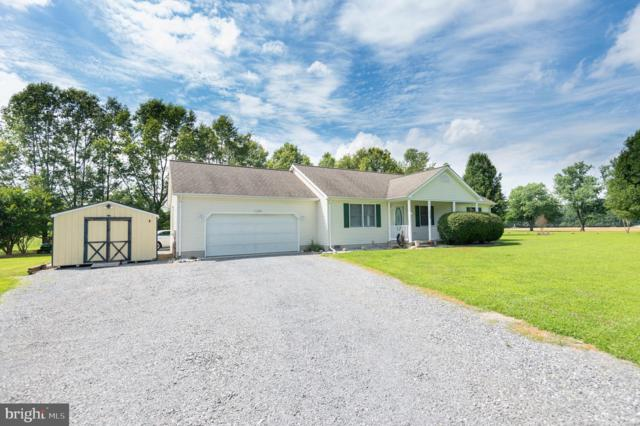 11688 Holly Road, RIDGELY, MD 21660 (#MDCM122584) :: Great Falls Great Homes