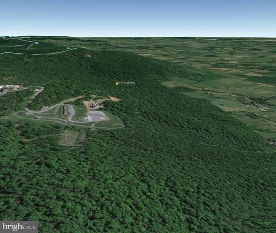 Old Mount Weather Road, BLUEMONT, VA 20135 (#VALO388424) :: Peter Knapp Realty Group