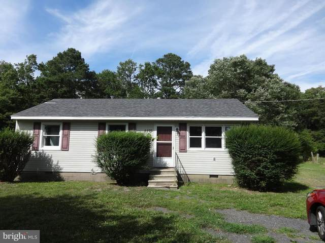 8775 Wedda Scott Road, WESTOVER, MD 21871 (#MDSO102370) :: RE/MAX Coast and Country