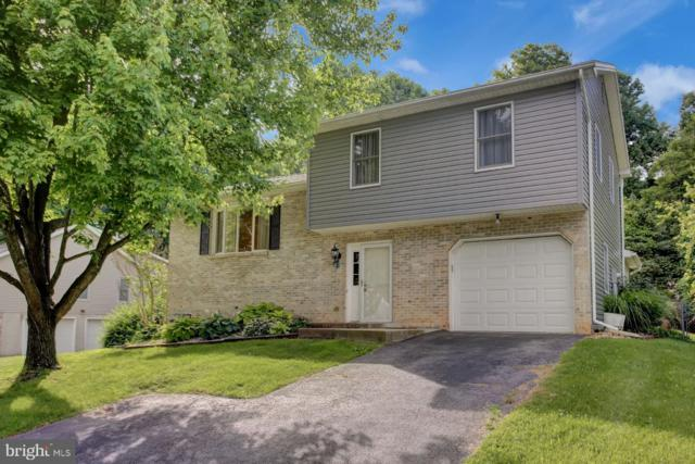 515 Randall Circle, HUMMELSTOWN, PA 17036 (#PADA112146) :: The Heather Neidlinger Team With Berkshire Hathaway HomeServices Homesale Realty