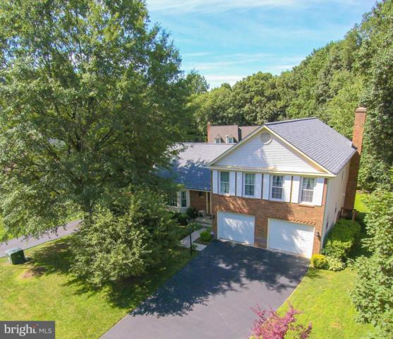 12857 Valleywood Drive, WOODBRIDGE, VA 22192 (#VAPW472400) :: AJ Team Realty