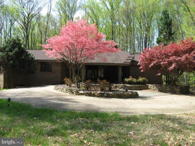 10241 Akhtamar Drive, GREAT FALLS, VA 22066 (#VAFX1074062) :: Great Falls Great Homes
