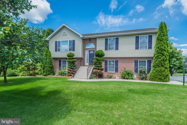 201 Grayson Circle, SHIPPENSBURG, PA 17257 (#PAFL166724) :: The Joy Daniels Real Estate Group