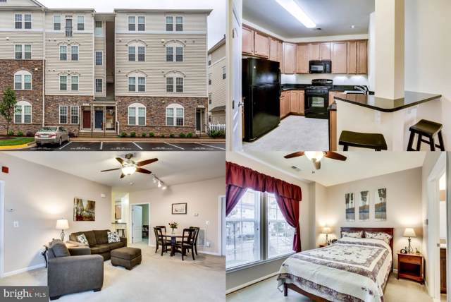 24676 Byrne Meadow Square 5-103, ALDIE, VA 20105 (#VALO388838) :: EXP Realty