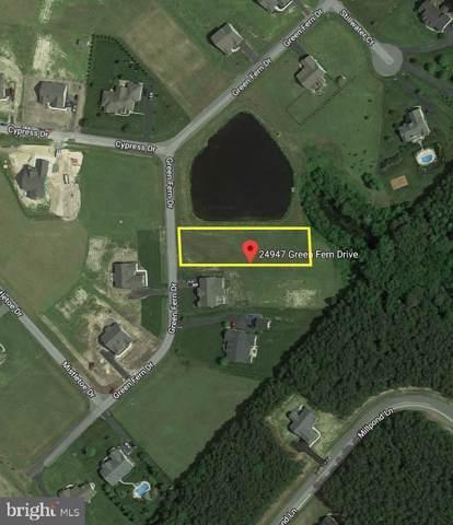 24947 Green Fern Drive, GEORGETOWN, DE 19947 (#DESU143438) :: RE/MAX Coast and Country