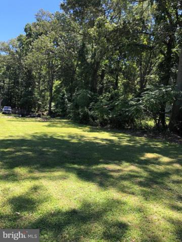 Lots 1, 2 & 3-59 Lake Shore Drive, PASADENA, MD 21122 (#MDAA405758) :: The Licata Group/Keller Williams Realty