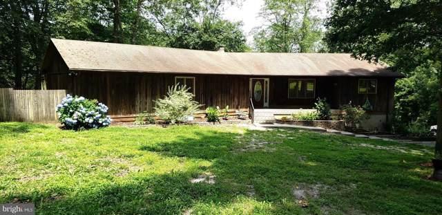 537 Mccauley Pond Road, HARRINGTON, DE 19952 (#DEKT230360) :: REMAX Horizons
