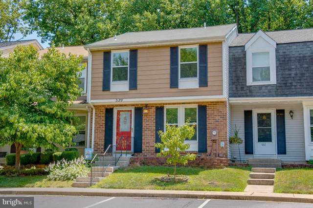 559 Bay Dale Court, ARNOLD, MD 21012 (#MDAA405820) :: The Daniel Register Group