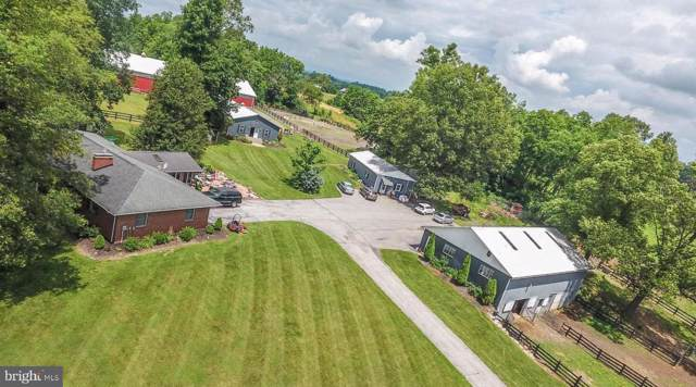 9867 Grindstone Hill Road, GREENCASTLE, PA 17225 (#PAFL166790) :: John Smith Real Estate Group