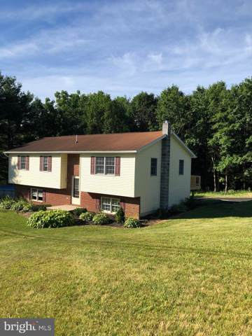 720 Siloam Road, CHAMBERSBURG, PA 17201 (#PAFL166812) :: Liz Hamberger Real Estate Team of KW Keystone Realty