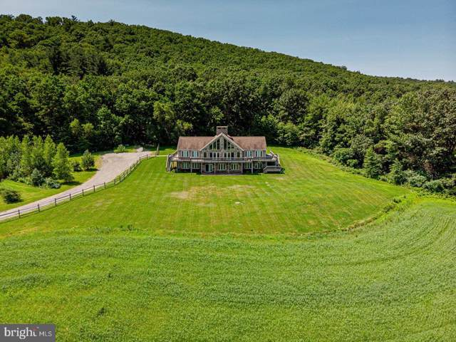1586 Penn Drive, ANDREAS, PA 18211 (#PASK126702) :: The Joy Daniels Real Estate Group