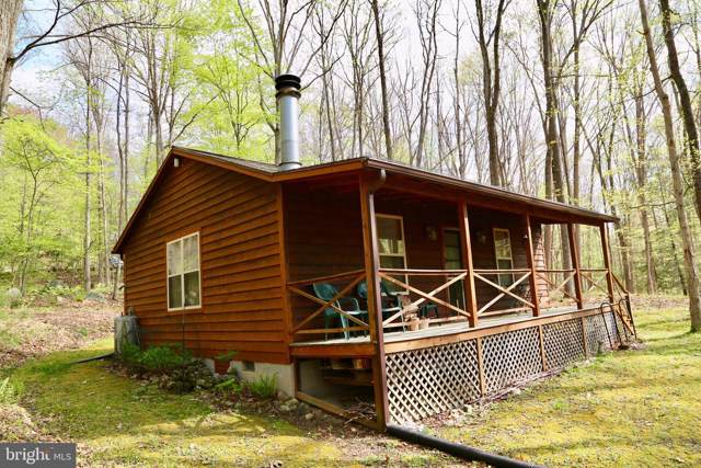 642 Wild Turkey Ridge, LOST RIVER, WV 26810 (#WVHD105278) :: AJ Team Realty