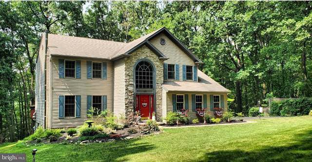 26 Hollow Woods Drive, PEQUEA, PA 17565 (#PALA136158) :: The Heather Neidlinger Team With Berkshire Hathaway HomeServices Homesale Realty