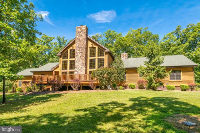 39505 Stonestreet Farm Lane, ALDIE, VA 20105 (#VALO389436) :: AJ Team Realty