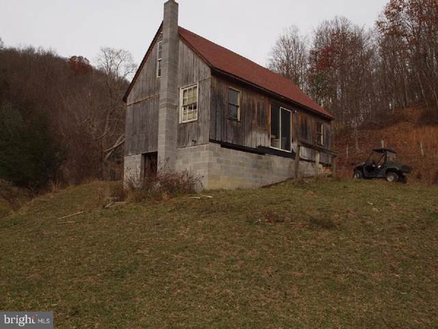 1228 Spring Run Road, SUGAR GROVE, WV 26815 (#WVPT101252) :: Tessier Real Estate