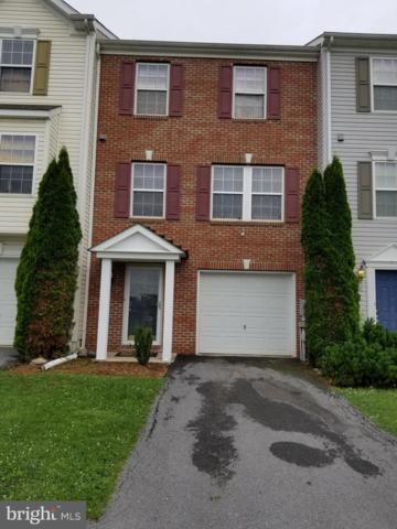 29 Quartz Road, MARTINSBURG, WV 25404 (#WVBE169482) :: The Daniel Register Group